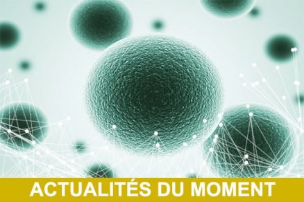 N2S-ACTUALITE-du-Moment