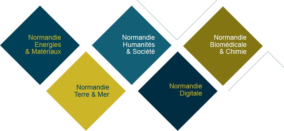Un Réseau d'Intérêts Normands «Normandie Biomédicale et Chimie»